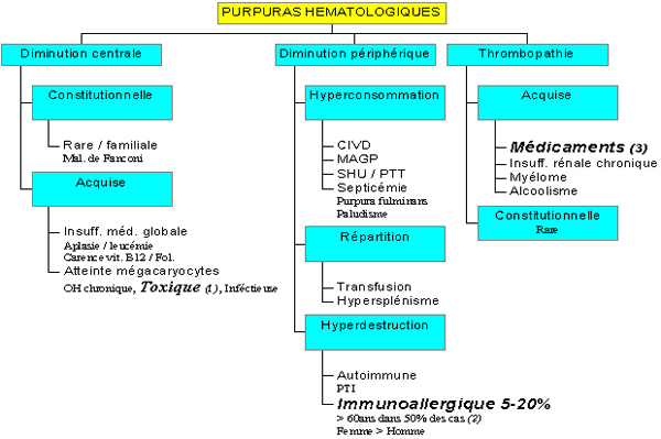 Cas Clinique : PURPURA - Urgences-Online