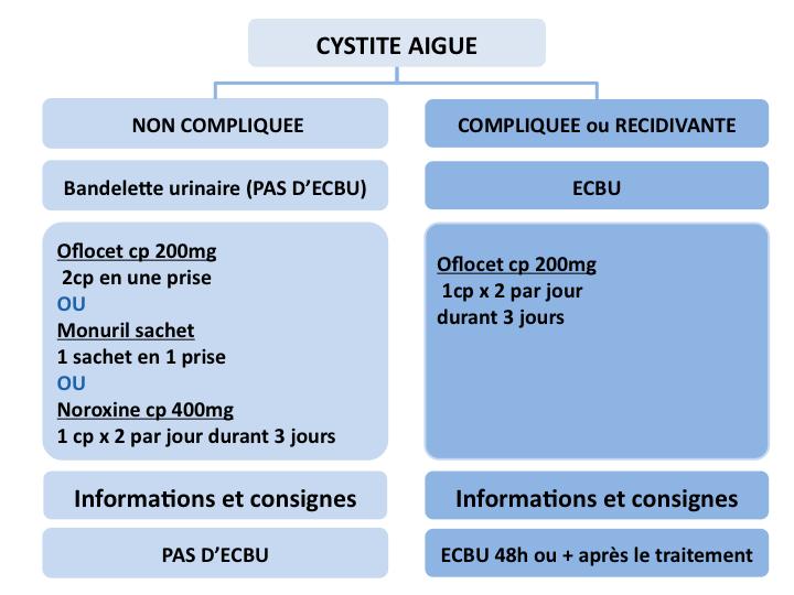 Cystite aiguë aux urgences - Urgences-Online